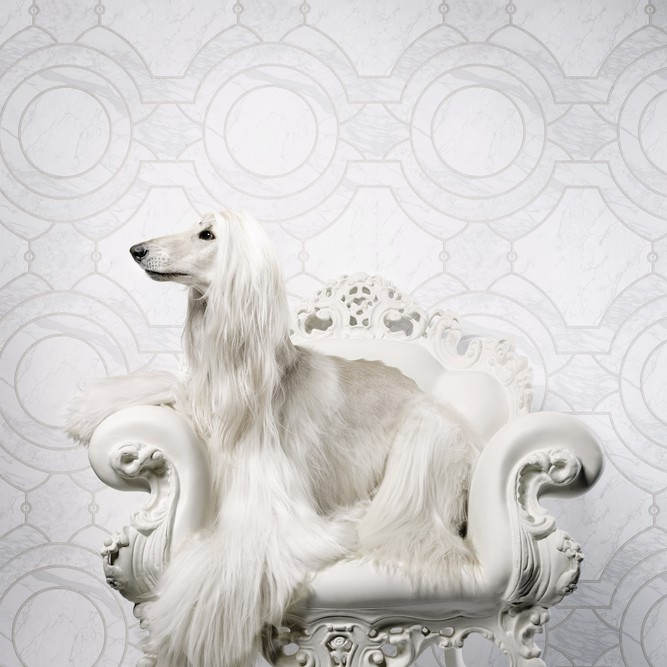 Picture: Neo Royal - Marcel Wanders 218634
